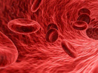 CRP Test Hemma – Snabbt Blodprov från Quicktest